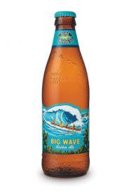 Big wave 19 oz